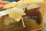 Забрус из акациевого мёда