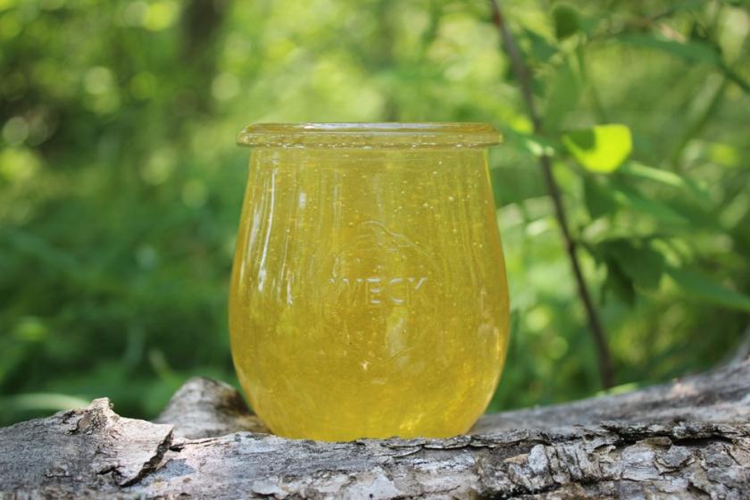Майский (Акациевый + Черноклёновый) мёд 2020 г.