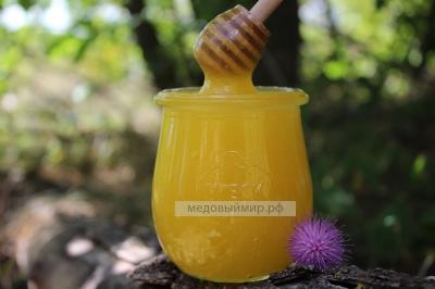 Мёд расторопши