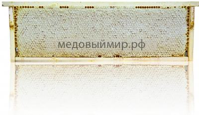 Мёд в сотах 2020 г.