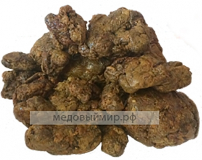 Прополис (10 граммов)